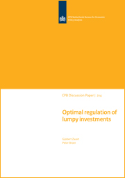 Image for Optimal regulation of lumpy investments