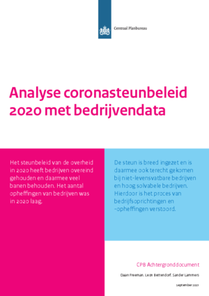 Analyse coronasteunbeleid 2020 met bedrijvendata