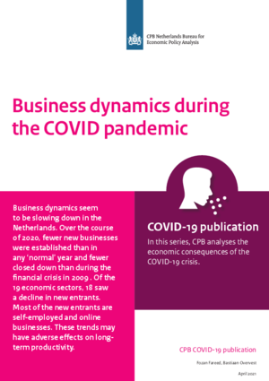 Business dynamics during the COVID pandemic