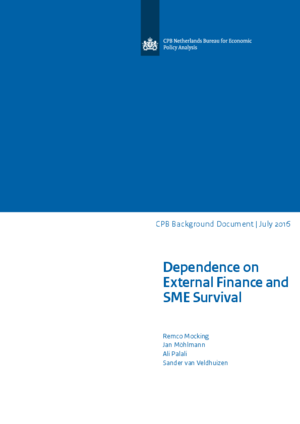 Dependence on External Finance and SME Survival