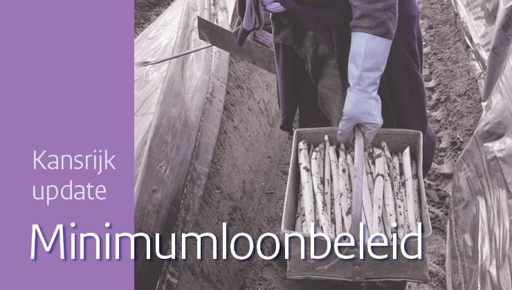 Image for Kansrijk arbeidsmarktbeleid: update minimumloonbeleid
