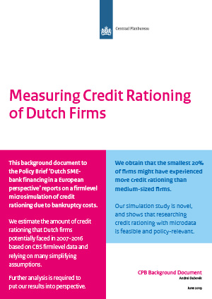 Measuring Credit Rationing of Dutch firms