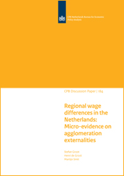Image for Regional wage differences in the Netherlands: Micro-evidence on agglomeration externalities