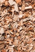 CPB Policy Brief 'Biomassa met CO2-opslag direct inzetten'