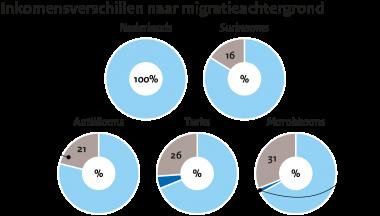 Image for Inkomensongelijkheid naar migratieachtergrond