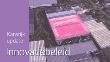 Image for Kansrijk innovatiebeleid: update