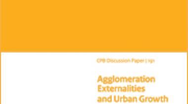 Image for Agglomeration Externalities and Urban Growth Controls