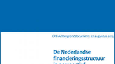Image for De Nederlandse financieringsstructuur in perspectief