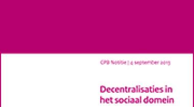 Image for Decentralisaties in het sociaal domein