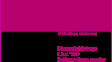 Image for Discussiebijdrage t.b.v. 'IBO Zelfstandigen zonder personeel'