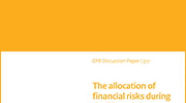 Image for The allocation of financial risks during the life cycle in individual and collective DC pension contracts